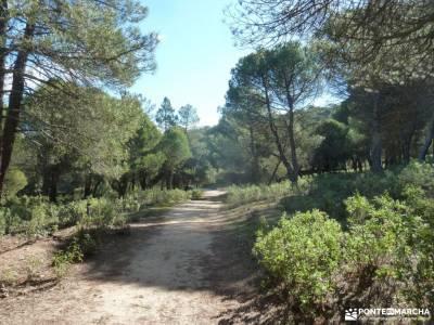 Ruta del Boquerón-Caminar rápido [RETO,Power Walking]rutas senderismo sierra madrid viajar en año